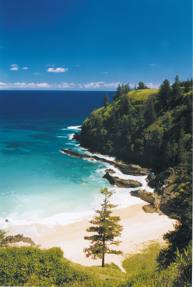 Norfolk island australia the great southern route welcome to norfolk island sciox Images